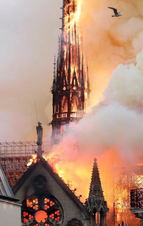 Foto's brand Notre-Dame: fotografen draaien overuren
